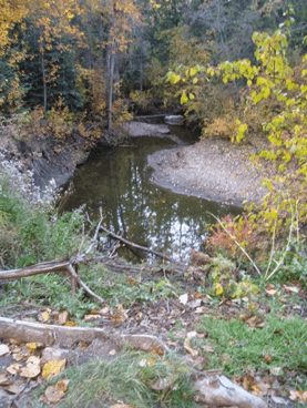Millcreek Ravine